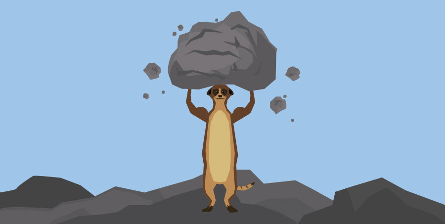 A Meerkat Lifting a Heavy Rock