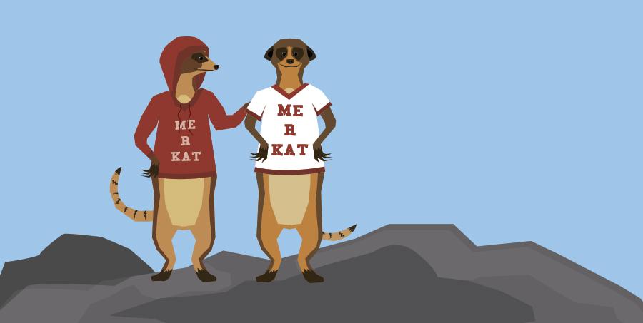 Meerkats wearing the same sweatshirt
